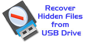How to Recover Virus Effected Hidden Files from USB Drive