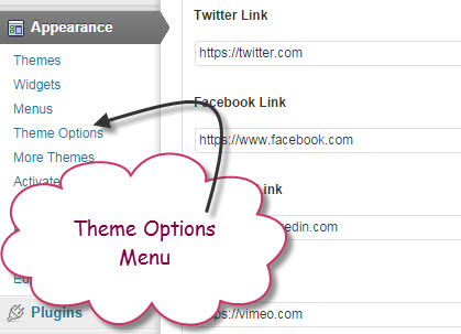 add-theme-option-wordpress-2