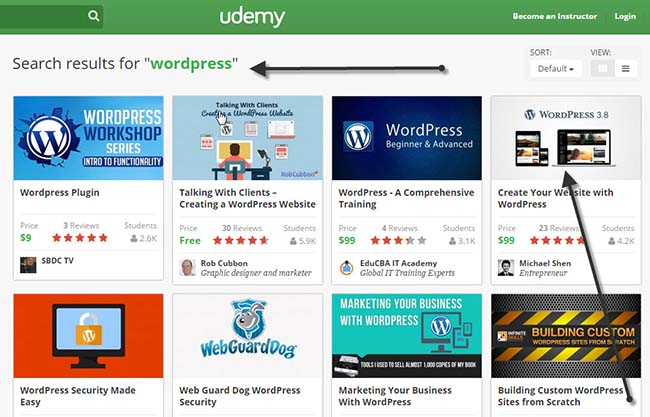 udemy-online-wordpress-course2