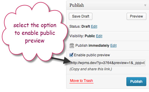 How to Give Access WordPress Post Public Preview