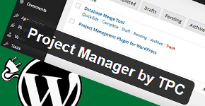 Best WordPress Project Management Plugin: Part 2