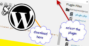 How to Download Installed Plugin or Theme Via WordPress Admin